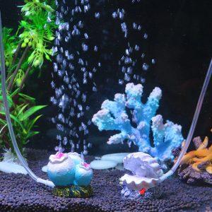 migliori decorazioni per acquario