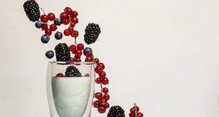 miglior yogurtiera a vasetti